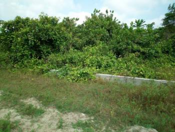 a 24000sqm Large Parcel of Land, Burdilon Road, Ikoyi, Lagos, Ikoyi, Lagos, Mixed-use Land for Sale