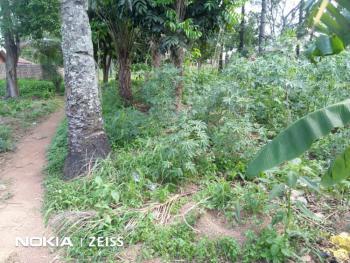 Land with Suveyor Plan, Abakpa Nike, Enugu, Enugu, Mixed-use Land for Sale