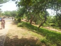 Fantastic Cheap Plot Of About 1527.85 Square Metre, , Maitama District, Abuja, Land For Sale