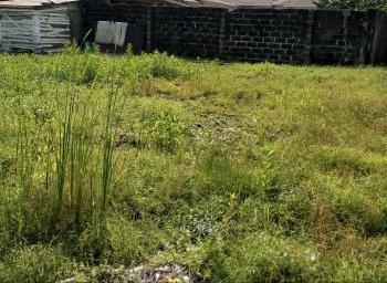 29 Plots of Land, Ajao Road, Off Adeniyi Jones Avenue, Ikeja, Lagos, Mixed-use Land for Sale
