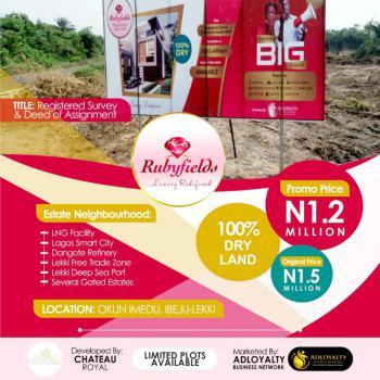 Rubyfields Estate, Opposite The Express, Okun Imedu, Ibeju Lekki, Lagos, Residential Land for Sale