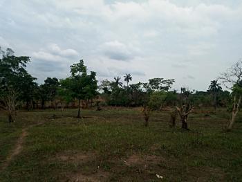 12 Plots of Land with C of O, Akpoga Nike,, Emene, Enugu, Enugu, Mixed-use Land for Sale