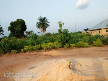 Land, Agwushi Ukwu, Along Isah Road, Aniocha South, Delta, Mixed-use Land for Sale