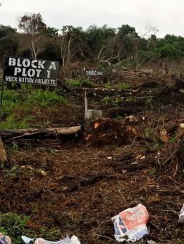 Nation Gardens, Iyanaschool, Off Igando Road,5 Mins Drive to Lasu, Alimosho, Lagos, Mixed-use Land for Sale