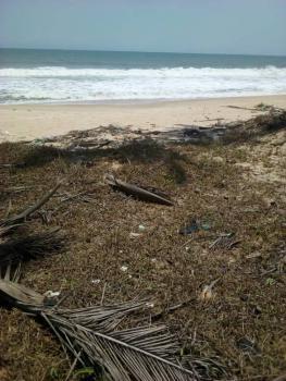 Land for Resort, Ibeju Lekki, Lagos, Commercial Land for Sale