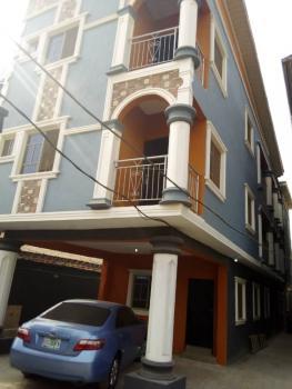Standard Miniflat with Visitors Toilet(upstairs), Off Adebowale, Ojodu, Lagos, Mini Flat for Rent