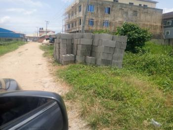 Half Plot of Land Measuring 327sqmts, Very Close to Ago Palace Way, Isolo, Lagos, Residential Land for Sale