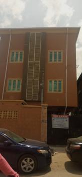 Newly Built Executive 2 Bedroom Flat, Lawanson, Surulere, Lagos, Mini Flat for Rent