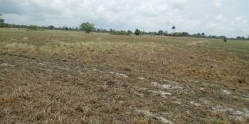 2 Full Size Plots of Land, Around The Golf Course, Ibeju Lekki, Lagos, Mixed-use Land for Sale