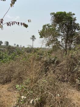 Farm Land, Odeda, Ogun, Mixed-use Land for Sale