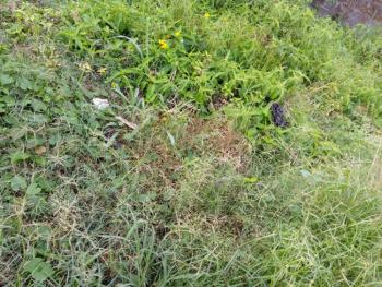 120 Plots of Land in a Build Up Area, Just Opposite Abijo Gra, Lekki, Lagos, Mixed-use Land for Sale
