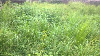 Residential Plot of Land in a Prime Location, Gra, Magodo, Lagos, Residential Land for Sale