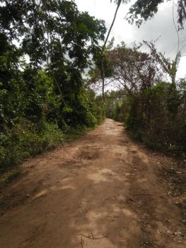 Ondoko, Oke-mekun,elebu,off Alao-akala Express Way, Ibadan, Oyo, Mixed-use Land for Sale
