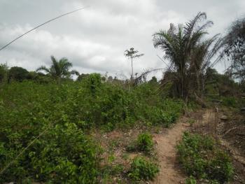 Sanni Estate, Oke-mekun,elebu,off Alao-akala Express Way, Ibadan, Oyo, Mixed-use Land for Sale
