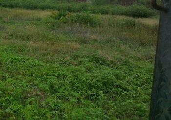 Land on Tarred Road Measureed @1,300sqm, Alagbaka Gra,akure Ondo State. ., Akure, Ondo, Mixed-use Land for Sale