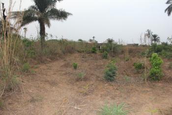 a Plot of Land at Ava City Estate Asaba (c of O), Ava City Estate Achalla Ibuzor, Asaba, Delta, Residential Land for Sale