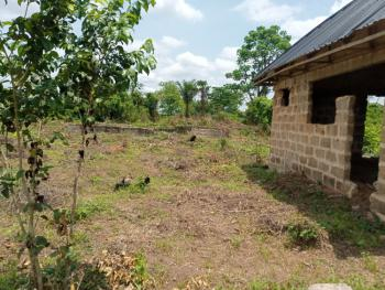 Land, Aruogba Community, Iyekogba Off Airport Road, Benin, Oredo, Edo, Mixed-use Land for Sale