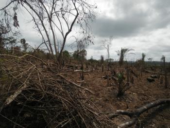 Land, Oke-mekun, Elebu, Off Alao-akala Express Way, Oluyole Extension, Ibadan, Oyo, Mixed-use Land for Sale
