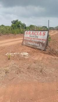 Do You Need a Land for Agricultural Business?, Ketu Epe Lagos, Epe, Lagos, Industrial Land for Sale