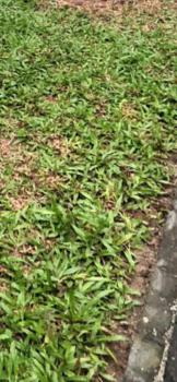 3 Plot of Land, Magboro Ojodu Extension, Magboro, Ogun, Mixed-use Land for Sale
