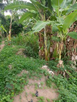 110 Acres of Land Good for Any Kind of Farming, Orile Ilugun Odeda Abeokuta, Odeda, Ogun, Commercial Land for Sale