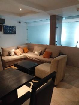 Luxurious Fully Serviced and Furnished One Bedroom Apartment, Old Ikoyi, Ikoyi, Lagos, Mini Flat Short Let