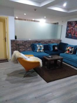 Fully Furnished and Serviced Luxurious  One Bedroom Apartment, Old Ikoyi, Ikoyi, Lagos, Mini Flat Short Let