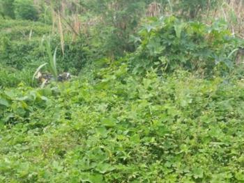 6,873sqm Commercial Land, Agidingbi, Ikeja, Lagos, Commercial Land for Sale