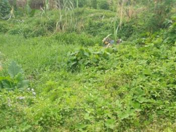 Corner Piece 440sqm Dry Land, Bode Thomas, Surulere, Lagos, Residential Land for Sale
