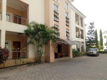 Serviced 3bedroom Flat with 1room Servant Quarter, Off Aguyi Ironsi, Maitama District, Abuja, Flat for Rent