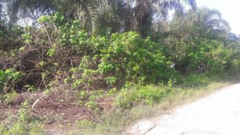 12 Hectares of Ocean Front  Mixed Use Development Land, Directly Behind Eko Akete Estate, Mosere Ikoga, Ibeju Lekki, Lagos, Mixed-use Land for Sale