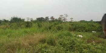 Acres of Dry Land, Maryland, Lagos, Land for Sale