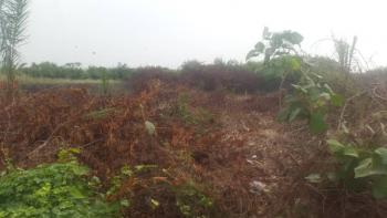 Two Fenced Plots of Land (1,309sqm), Silverpoint Estate, Badore, Ajah, Lagos, Residential Land for Sale