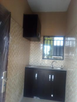 Very Fantastic Newly Built Miniflat., Off Grandmate Street, Ago Palace, Isolo, Lagos, Mini Flat for Rent