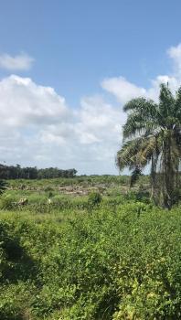 Plots of Dry Buy and Build Land, Jewel Gardens, Eleko, Ibeju Lekki, Lagos, Residential Land for Sale