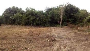 Acres of Land, Ibeju Lekki, Lagos, Industrial Land for Sale