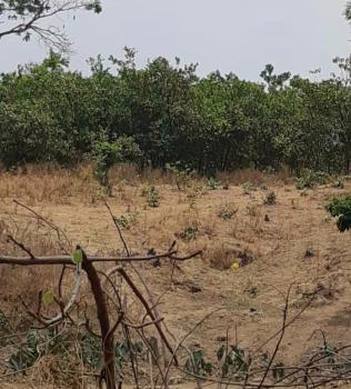 Prime Land, Near Lokogoma District, Kabusa, Abuja, Residential Land for Sale