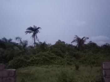 2 Plots of Land, Olokonla Road, Olokonla, Ajah, Lagos, Mixed-use Land for Sale