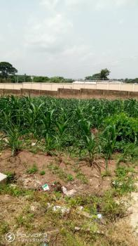 Standard Plot of Land, Infinite Close, Alpha Grace Estate, Jericho, Ibadan, Oyo, Residential Land for Sale