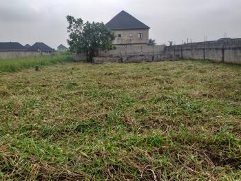 Cheap Land, Greenfield Estate, Amuwo Odofin, Lagos, Land for Sale