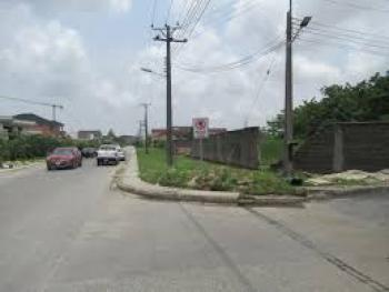 2 Plot of Land. Good for Residential Or Commercial, Ago Palace, Isolo, Lagos, Land for Sale