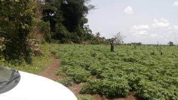Distress, 100 Plots of Dry Land, Epe, Lagos, Mixed-use Land for Sale