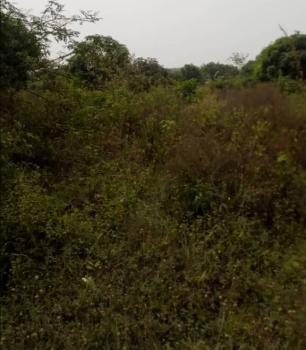Farm Land, Ibooro / Ayetoro, Yewa North, Ogun, Mixed-use Land for Sale