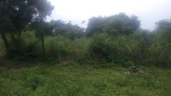 One Plot of Land at a Giveaway Price, Omi Adio, Apata, Ibadan, Oyo, Residential Land for Sale