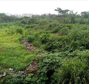 Farm Land, Between Awowo and Wasimi, Ewekoro, Ogun, Mixed-use Land for Sale