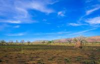45 Hectares Farm Land Along Kaduna Abuja Road, Kaduna South, Kaduna, Mixed-use Land for Sale