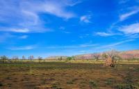 8 Plots Of Land State C Of O Along Command/kachia Road Pa Code 004, Kaduna South, Kaduna, Land for Sale