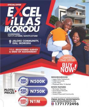 Land, Excel Gardens Jaloke Community Isiu, Ikorodu North Lcda, Ikorodu, Lagos, Mixed-use Land for Sale
