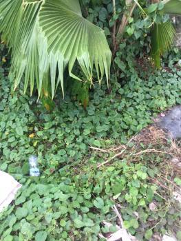 Land Measuring  946sqm, Pinnock Beach Estate, Osapa, Lekki, Lagos, Residential Land for Sale