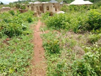 a Plot of Land, Liberty/academy Area Taye Mongonna Beside Idowu Eleja Farm, Olofa Area, Ibadan, Oyo, Residential Land for Sale